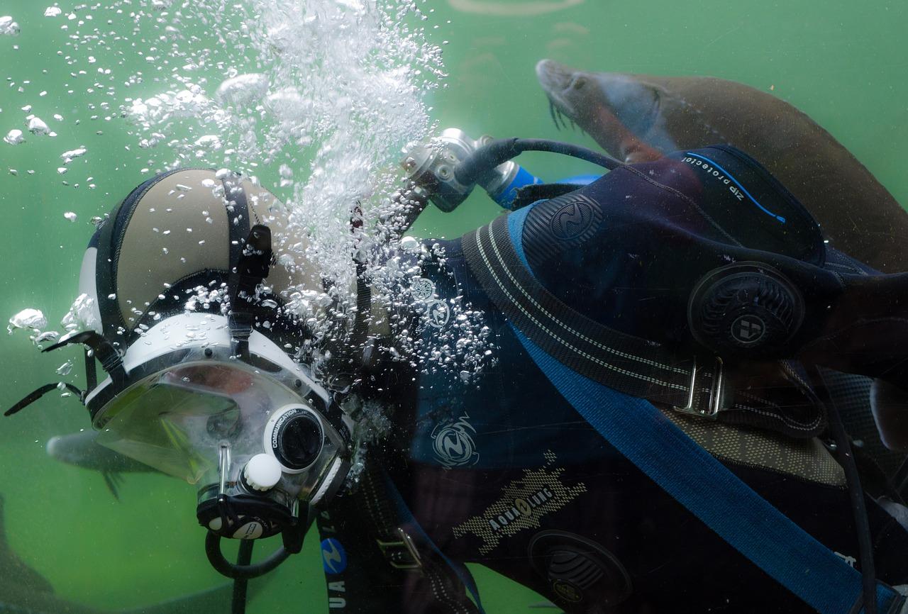 plongee sous marine apprenti